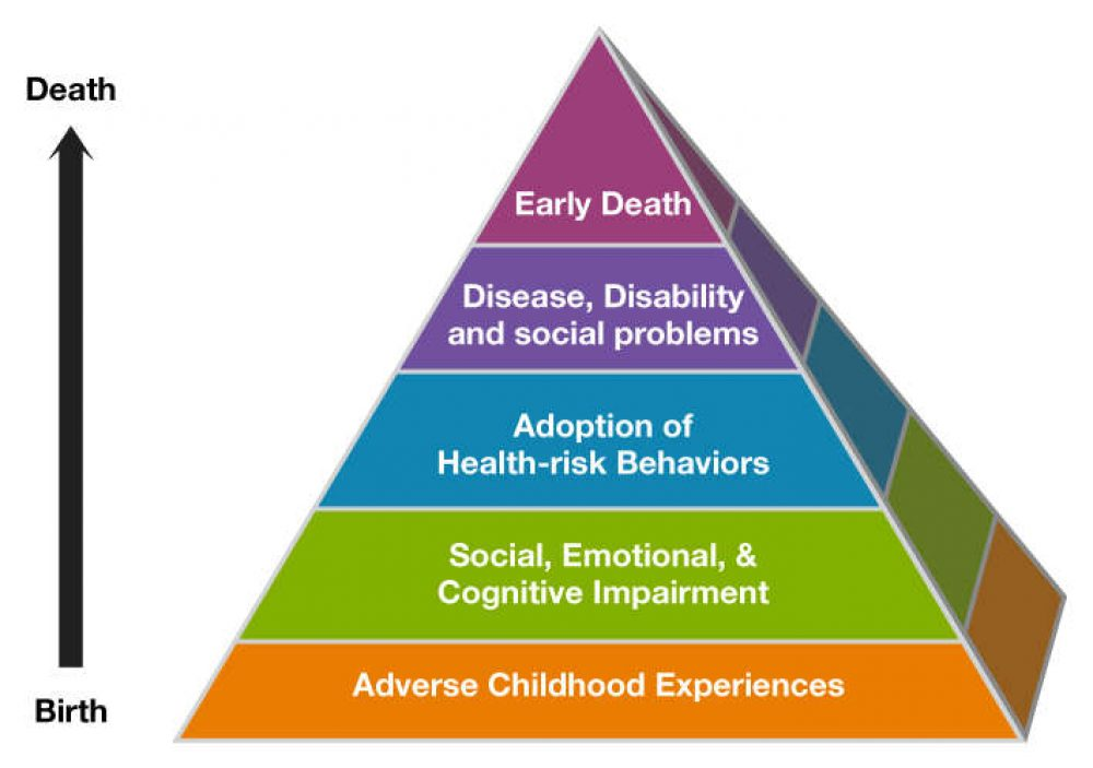 Adverse Childhood Experiences Online Training